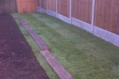 Landscaping - Turf